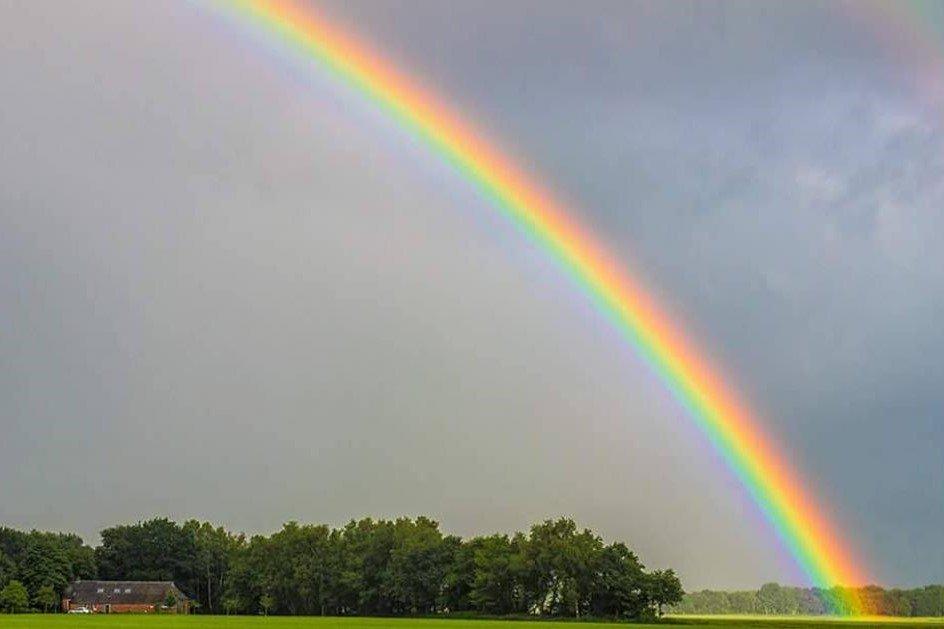 Regenbooggebed
